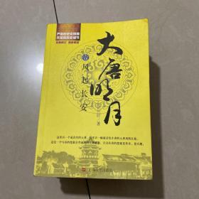 大唐明月4·碧血黄沙1一4册