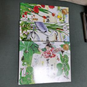 我的课外观察日记:第一季(全三册)