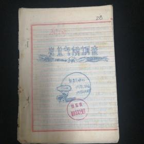 1959年•农业气候调查•新泰气候站 编•手写本!