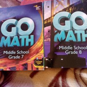 GO MATH Middle School Grade 7、8  两本合售