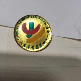 青岛第四十一中学  校徽