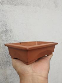 老紫砂水仙盆