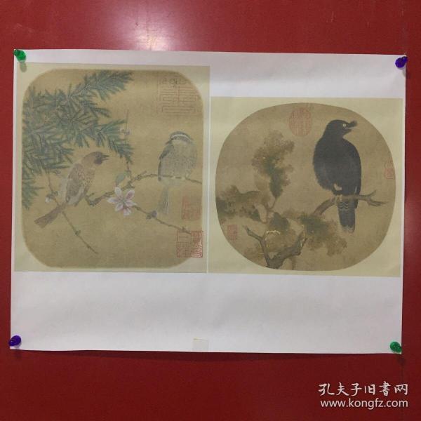 花鸟画【A25】受潮