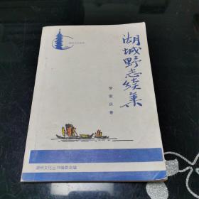 湖州文化丛书 湖城野志续集