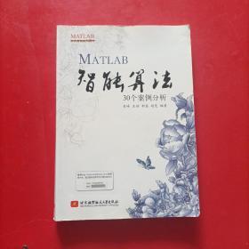 MATLAB智能算法30个案例分析