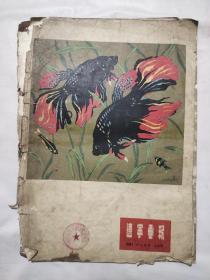 辽宁画报1956年12月号 1957年2月号 十二月号(三张封皮)