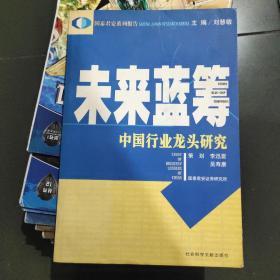 未来蓝筹:中国行业龙头研究