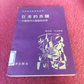 巨龙的苏醒——中国现代化道路的求索