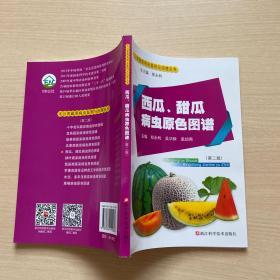 西瓜、甜瓜病虫原色图谱(第2版)/无公害蔬菜病虫鉴别与治理丛书