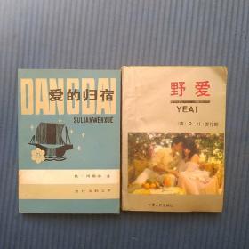 P26外国文学:爱的归宿,野爱2本合拍