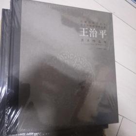 内蒙古师范大学美术学院教师美术作品集(王治平)没开封