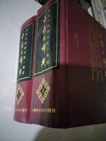 中药大辞典(上下册)