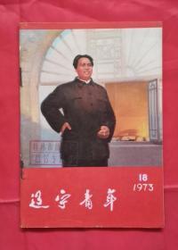 辽宁青年 73年18 包邮挂刷
