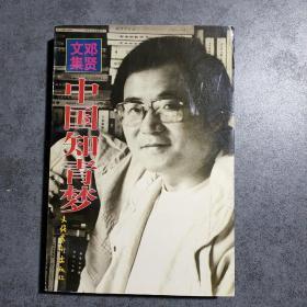 邓贤文集.第三卷.中国知青梦