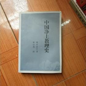 中国净土教理史