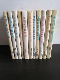 宝钢现代化管理丛书(正版精装)共11本