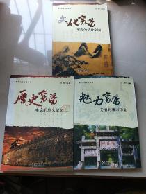 历史襄阳 : 难忘的悠久记忆  全三本