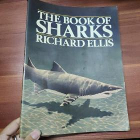 英文原版-THE BOOK OF SHARKS -鲨鱼之书-RICHARD ELLIS