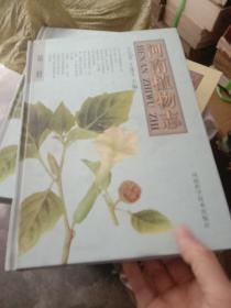 河南植物志.第三册 (封面有一处划伤介意者慎拍)