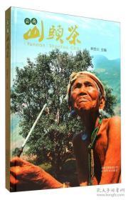 云南山头茶