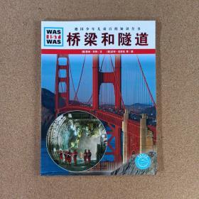 什么是什么:桥梁和隧道