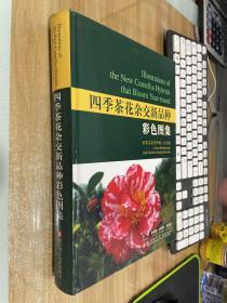 四季茶花杂交新品种彩色图集