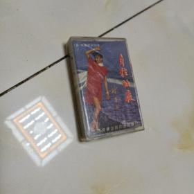 磁带:年轻的夜