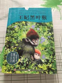 动物小说大王沈石溪:王妃黑叶猴