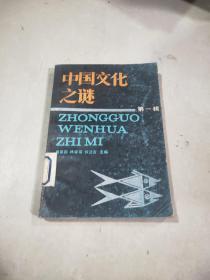 中国文化之谜 第一辑,