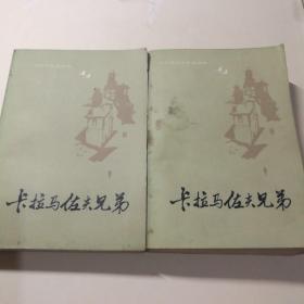 卡拉马佐夫兄弟(上下全:附原书人物表)
