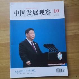中国发展观察2019 10