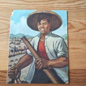农民,单页,9:9号上