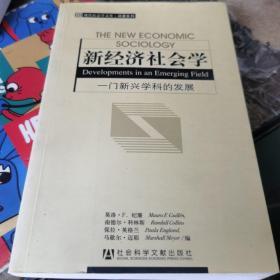 新经济社会学:一门新兴学科的发展