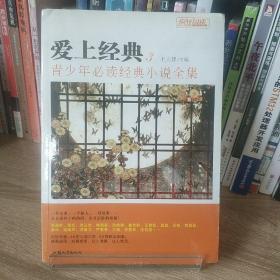 天星教育·疯狂阅读 爱上经典3:青少年必读经典小说全集 中国卷