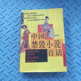 中国禁毁小说百部