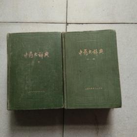 中药大辞典(上下)