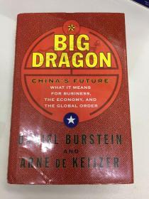 BIG DRAGON CHINA'S FUTURE(外文原版)
