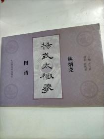 林炳尧杨式太极拳图谱