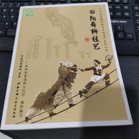 广西国家级非物质文化遗产系列丛书——田阳舞狮技艺