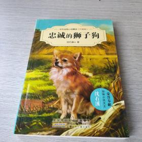 中外动物小说精品(升级版):忠诚的狮子狗
