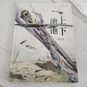 首届丰子恺优秀儿童图画书奖绘本:池上池下(随书附赠蜻蜓观察笔记)