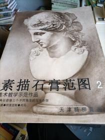 素描石膏范图 2