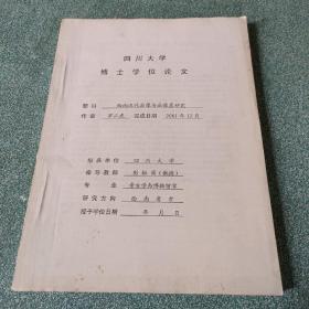 四川大学博士学位论文:西南汉代画像与画像墓研究
