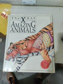 the xray picture book of  amazing animals
