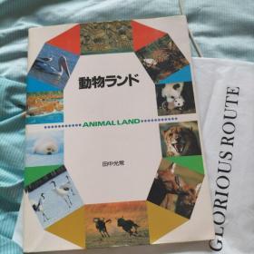 动物ランド(日文原版 动物摄影图片)