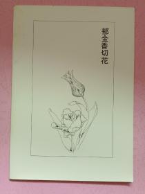 郁金香切花
