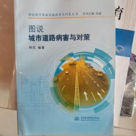 图说城市基础设施病害与对策丛书:图说城市道路病害与对策