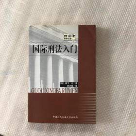 国际刑法入门
