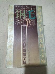 中国成语毛笔钢笔两用字帖