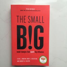 英文原版  The small BIG:Small Changes that Spark Big Influence